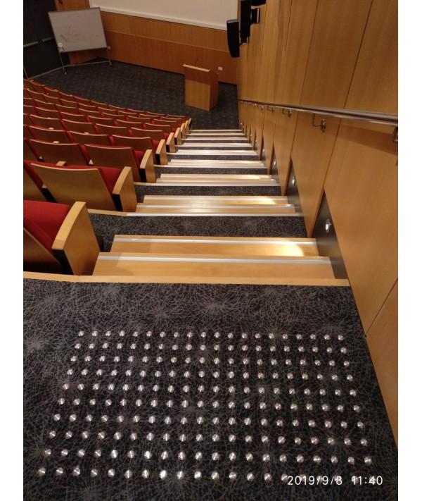 """מסמרות נגישות מנירוסטה- מכון ויצמן אולם סן מרטין- בוצע ע""""י בטיחותי-מובילים לסביבה בטוחה"""